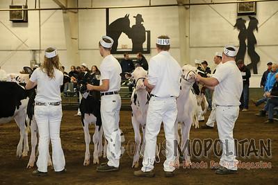 BC Spring Holstein Show 2016