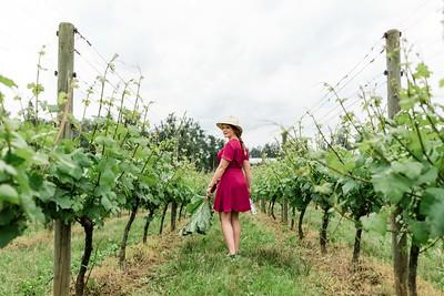 Fraser Valley Wine Region. British Columbia Wine Institute