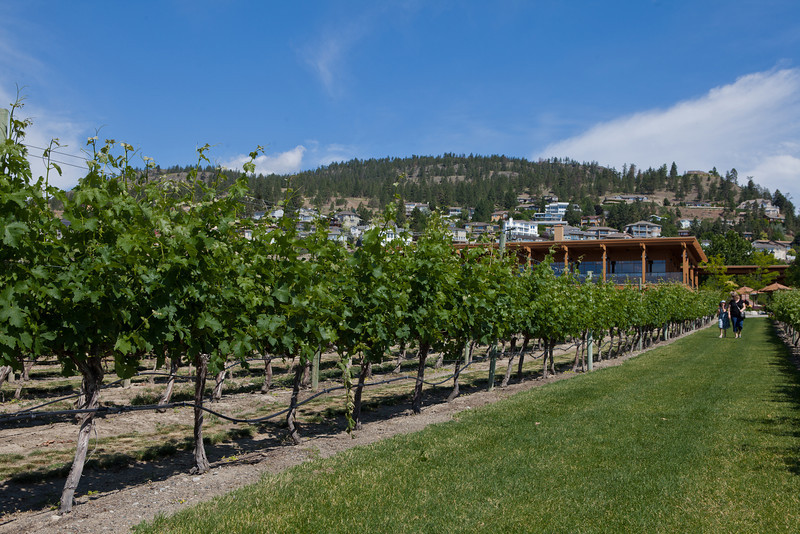 Quails' Gate Winery. Kelowna, BC