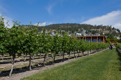 Quails' Gate Winery. Kelowna, BC