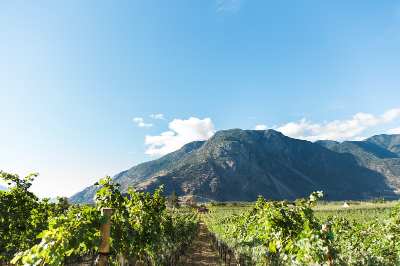 20160922_BC Wine Institute - Similkameen Region - 1002.jpg