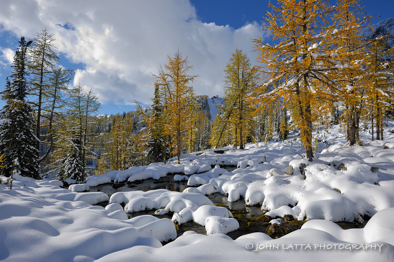 Early October Snowscape
