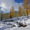 September Snowscape