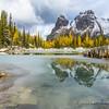 Wiwaxy Peak Reflection