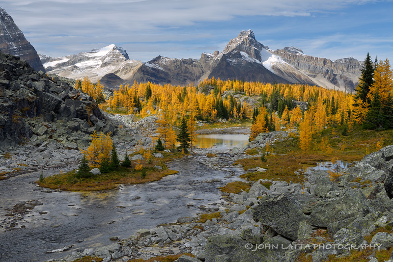 Cathedral Peak and Mount Stephen from Opabin Plateau