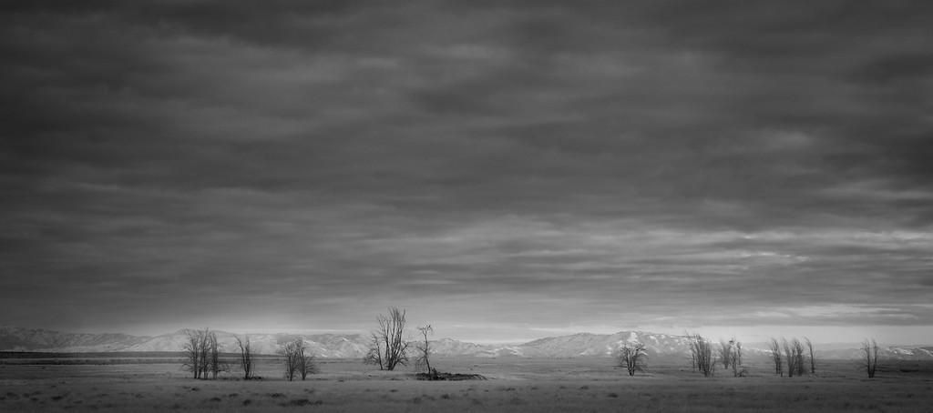Shane Davila 1 ByGone-X3