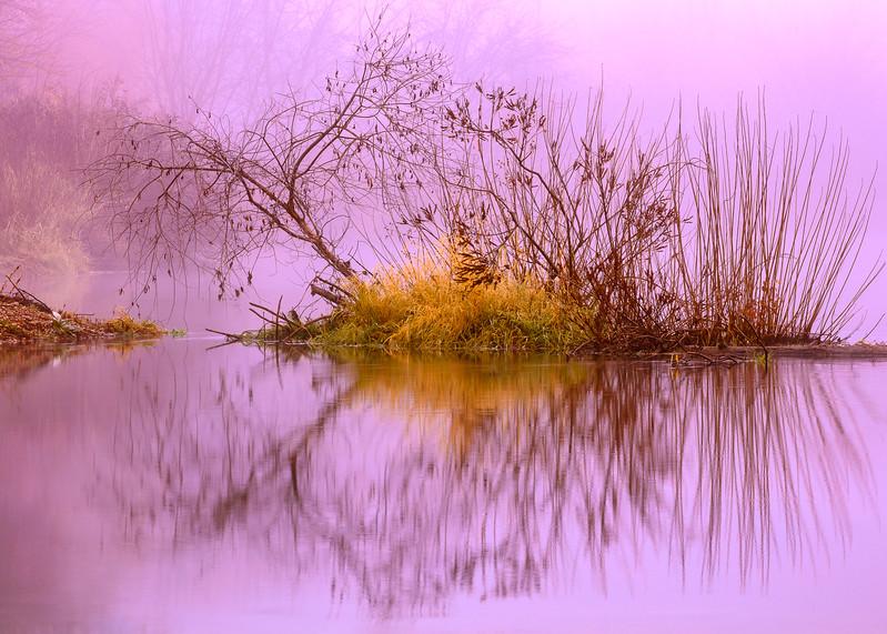 Lance Christianson Island in the Mist