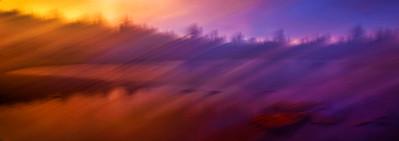 015 Scott Carter 1 Dreamscape AS