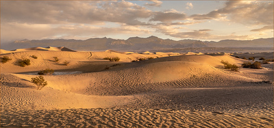 001 Ken Wilkes 1 Mesquite Dunes at Dusk AS