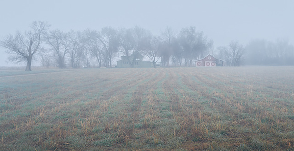 Ken Wilkes 2 Farm in Fog