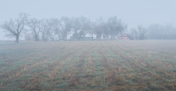 Ken Wilkes 2 Farm in Fog