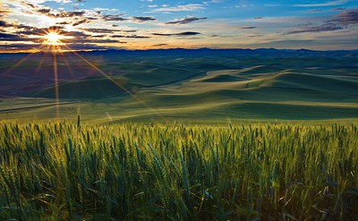 106 Greg Stringham 1 Palouse Sunrise
