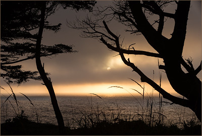 Rick Ohnsman 2 Silhouttes the Sun & Sea