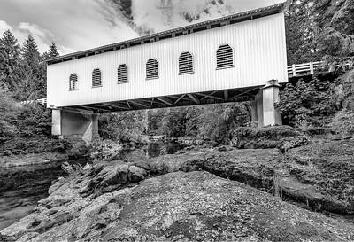 Derek Ford 2 Dorena Bridge
