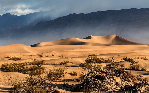 Ken Wilkes 2 Mesquite Dunes