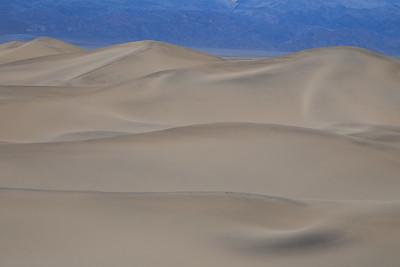 119 Shane Davila 1 Dunes