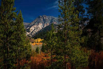 Scott Carter 1 Aspen Mountain Scene