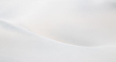 Shane Davila 2 Curvy