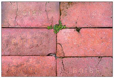 011 Martin Torres 2 Boise Bricks AS