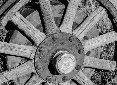 111 Giuseppe Ciaccio 1 Wheel