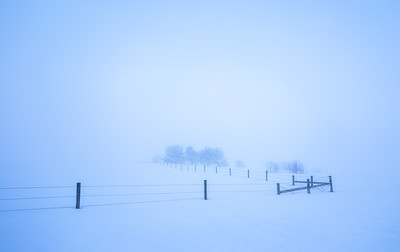 Shane Davila 1 Silence AS