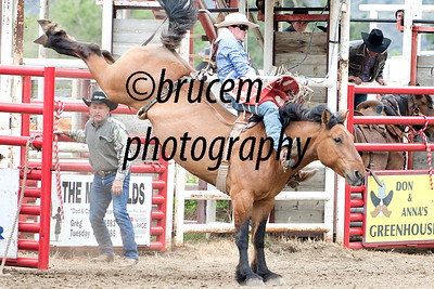 BCRA/Rodeos 2016