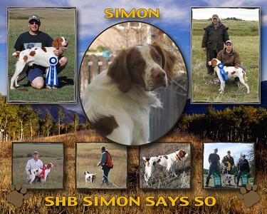 barry and simon