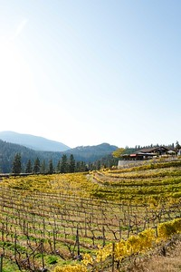 Okanagan Valley - Summerland
