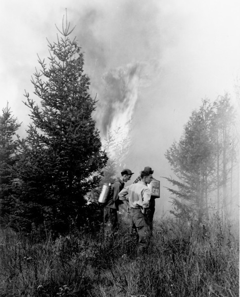 1947 Bar Harbor Fire2.jpg