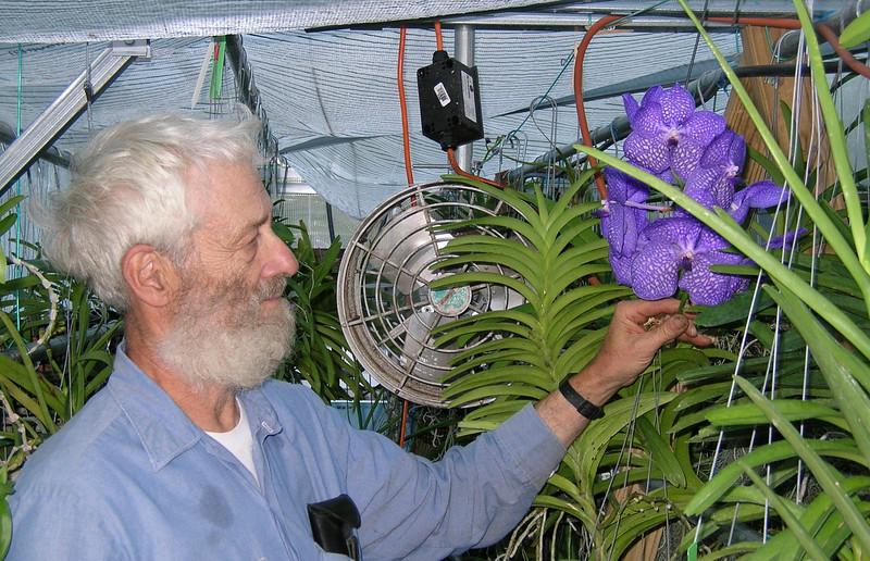 orchid 001.jpg