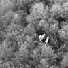 Plane crash aerial 1.JPG