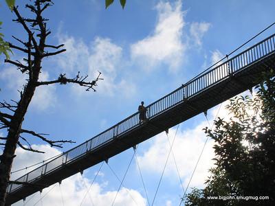 Jack on the bridge