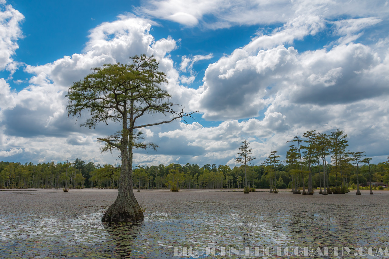 Goodale State Park S.C.