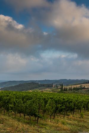 Near Lorenzana.