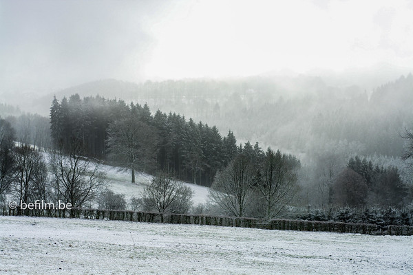 the ardennes in winter time