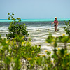 Fly Fishing Glover's Reef Atoll, Belize – © Jim Klug Outdoor Photos and Yellow Dog Flyfishing Adventures