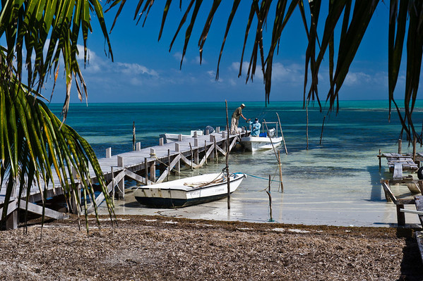 Fly fishing Belize River Lodge Long Caye Outpost Lodge - Long Caye, Belize - Klug Photos 2012