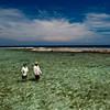 Turneffe Flats, Belize - Jim Klug Photos
