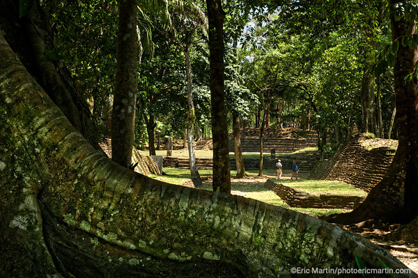 BELIZE. Site archeologique de Nim Li Punit