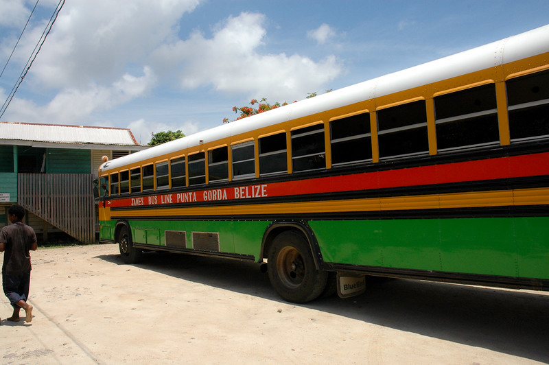 School Bus<br /> Punta Gorda