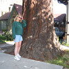 GILDA AND A HUGE TREE IN FRONT OF HEATHER & MIKE'S HOUSE IN BERKELEY