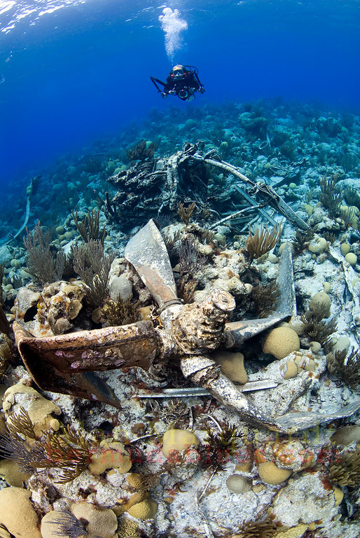 One of the props and motor on the wreck of the Airplane, 1961.<br /> Western reefs, Bermuda, 2009.