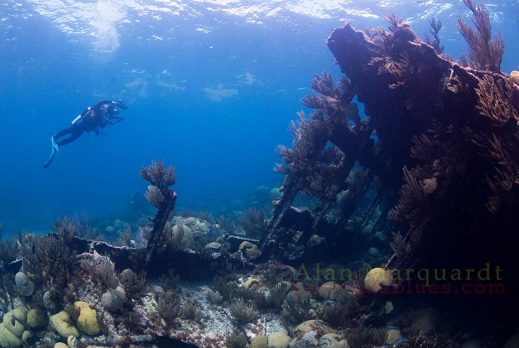 The Montana's (1863) bow lies on it's port side in 8 meters of water.<br /> Northwestern reef, Bermuda, 2009.
