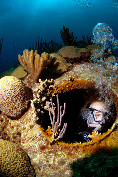 A diver looks thru a port hole on the largest wreck in Bermuda waters, the Cristobal Colon. The North shore, Bermuda