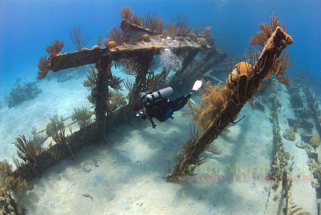 Part of the Hull of the North Carolina is still intact an sits upright on the bottom in 10 meters of water.<br /> Western reefs, Bermuda, 2009