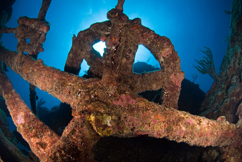 Engine parts on the Minnie Breslauer (1849).<br /> South shore, Bermuda, 2009.