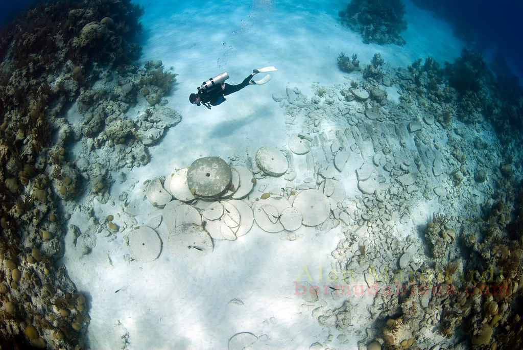The wreck of the Caesar (1818) is very small.<br /> Western reef, Bermuda, 2009.