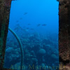 View from the bridge on the wreck of, Hermes, Bermuda (sunk 1984).