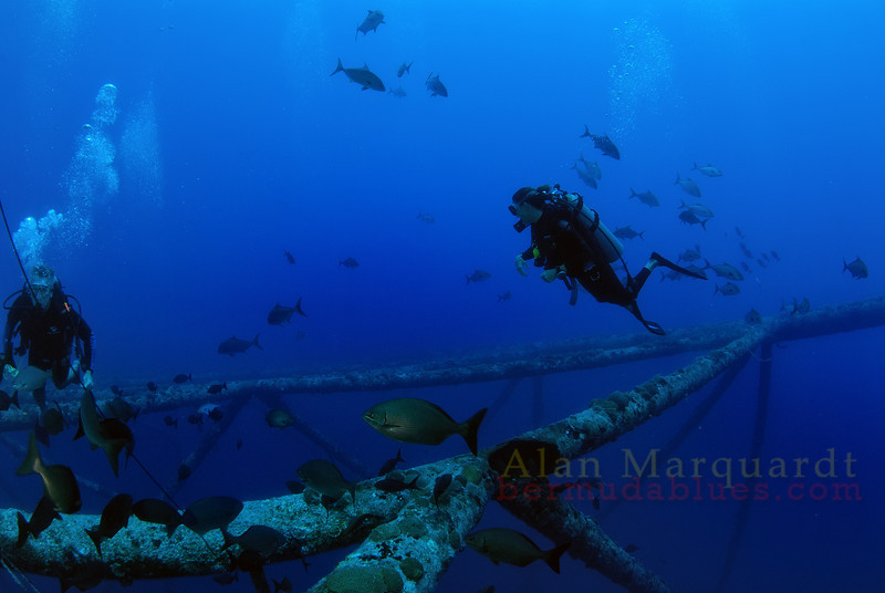 Diver on the Argus tower, Bermuda.