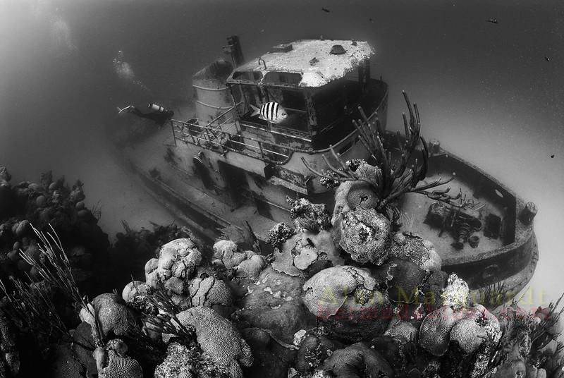 Tug Boat, Bermuda